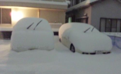 DVC00008-001大雪なの♪.jpg