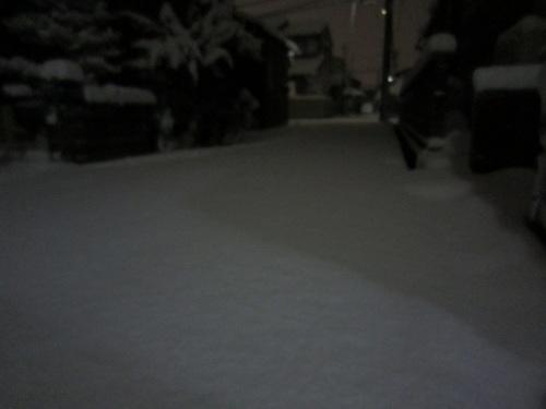 IMG_20120126-TOP大雪です~♪.jpg