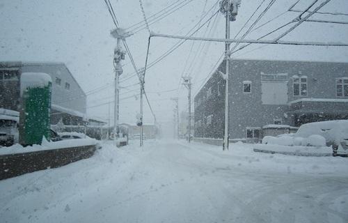 IMG_20120127-001大雪です~♪.jpg