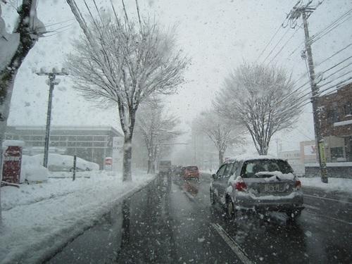 IMG_20120127-TOP大雪です~♪.jpg