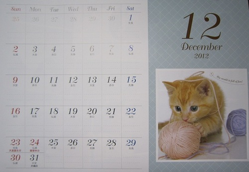 IMG_20121202-001にゃんこ♪.jpg